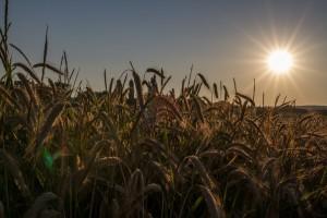 Sonne bei f/16