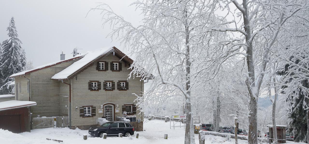 im Winter-Märchenwald