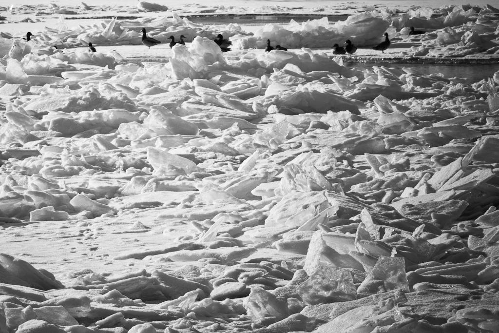 Eiszeit an der Naab